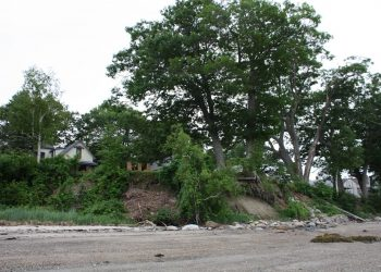 Eroded-embankment-beneath-tree-prior-to-stabilization-350x250.jpg